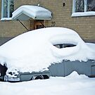 Old SAAB - covered with snow by Paola Svensson