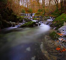Autumn Waterfall by Leon Ritchie
