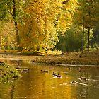 an autumn is in a park by Tasha1111