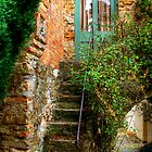 The Studio Steps at Montsalvat by Christine Smith