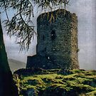 Dolbadarn Remains by Larry Lingard/Davis