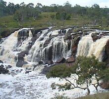 Nigretta Falls, Victoria (1) by DashTravels