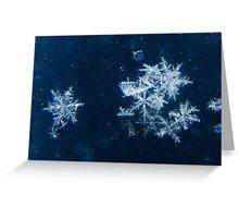 Snowflakes Keep Falling In My Dreams Greeting Card