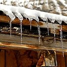 Icicles on a wooden chalet, Switzerland by buttonpresser