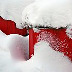 Red snow by Bluesrose