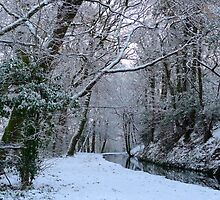 Winter woodland canal walk by magicaltrails