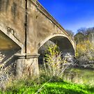 Fyansford Monier Arch Bridge- Geelong Australia by shadesofcolor