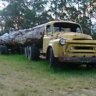 Old logging truck, Bilpin, NSW by DashTravels