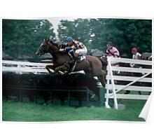 The Steeplechase Poster