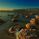 &quot;Lake Clifton Thrombolites&quot; by Heather Thorning