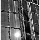 Windows by dazaria