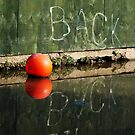 Give It Back, Reflection in Oxford Canal by Guy Carpenter