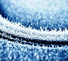 Ice Crystals by Guy Carpenter