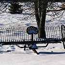 ALL ALONE!!! by Larry Trupp