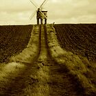 Chesterton Windmill  by Daniel Loxley Warwood