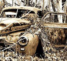 Wanna Take a Drive? by Seth LaGrange
