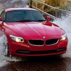 Red Zed Wet, Wet, Wet! by Peter Tachauer