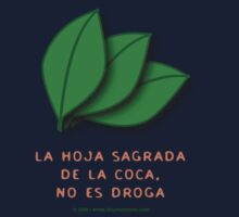 the sacred coca is not a drug... by carol weaver