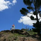 Almost to the Top of Double Island Point by aussiebushstick
