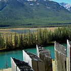 picket fence by vernonite