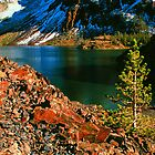 TENAYA LAKE by Chuck Wickham