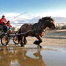 A beach ride by Adri  Padmos
