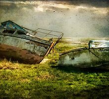 Seen better days by Tarrby
