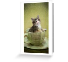 Would you like a spot of tea? Greeting Card