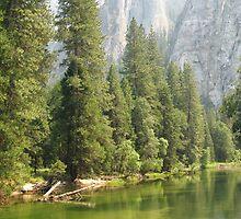 Yosemite by IslandImages