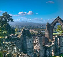 Haughmond Abbey  by dan williams