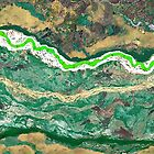 """Snake River"" by Patrice Baldwin"