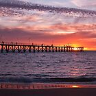Red Sky at Night by crickmedia