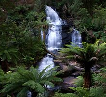 Triplet Falls - Otways National Park, Australia by John Bullen
