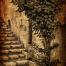 Backstreet Steps by Stephen Morris