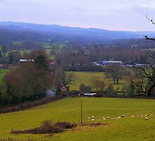 Etchingham from Burgh Hill by ColinBoylett