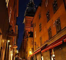 Quiet Night in Stockholm by kweirich
