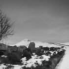 """""""Upon the Lomond hills we walked"""" by weecoughimages"""
