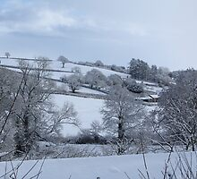 Winter Devon landscape by durzey