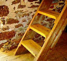 Loft Steps by Sharon Woerner