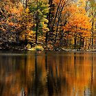 Autumn Reflections by jaegemt1