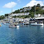 Looe river by durzey