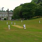 Cricket at Cockington Court by ColinBoylett