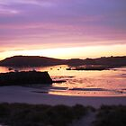 Harbour, Alderney sunrise by durzey