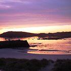 Harbour, Alderney sunrise by durzey