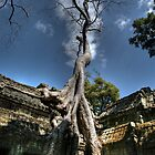 The big stree in Angkor Wat by draibolit