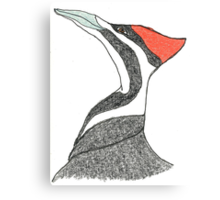 pileated woodpecker Canvas Print