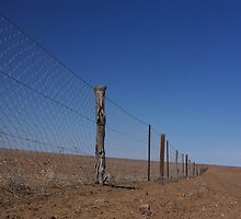 The Great Dingo Fence by Darren Adams