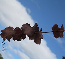 grapes vine by Sue-Ellen Cordon