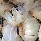 Garlic brides by patjila