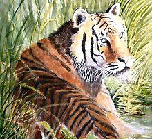 "Cooling Down - Watercolour - 24"" x 18"" by Jorja"
